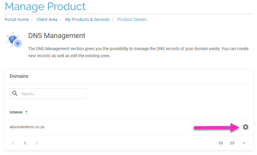 absolutehosting.co.za DNS management select domain