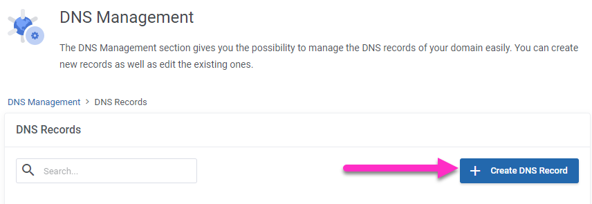 absolutehositng.co.za - create dns record