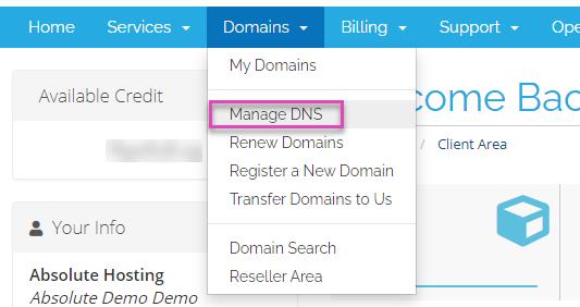 absolutehosting.co.za domains-manage-DNS